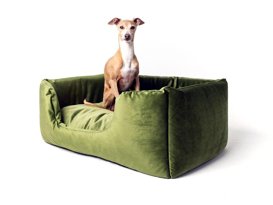 """<p>Your pup will love long post-walk snoozes in a squishy velour bed by Charley Chau. Its tall sides will make them feel protected, while the soft fabric will see them through many a dreamy dog nap. Plus, its sage-green shade makes a glorious addition to the chicest of interiors.</p><p>£140, <a href=""""https://www.charleychau.com/products/deeply-dishy-dog-bed-velour-contrast"""" rel=""""nofollow noopener"""" target=""""_blank"""" data-ylk=""""slk:Charley Chau"""" class=""""link rapid-noclick-resp"""">Charley Chau</a>.</p>"""