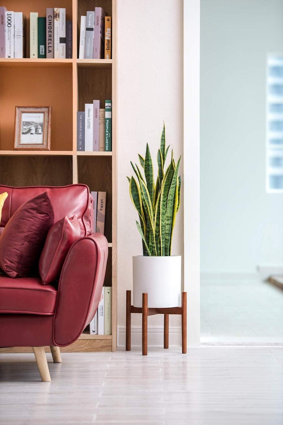 <p>The <span>Mkono Plant Stand in Brown</span> ($21) has a touch of red to it, which looks so stunning against its white pot. </p>