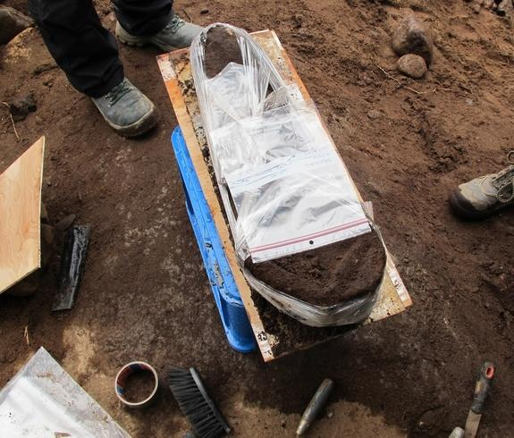 Stone Age Skull Unearthed with Bits of Brain Clinging to It