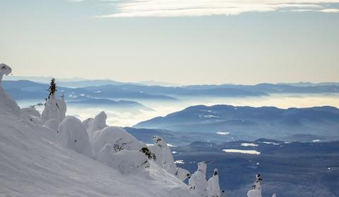 Slopes near Big White - Credit: getty