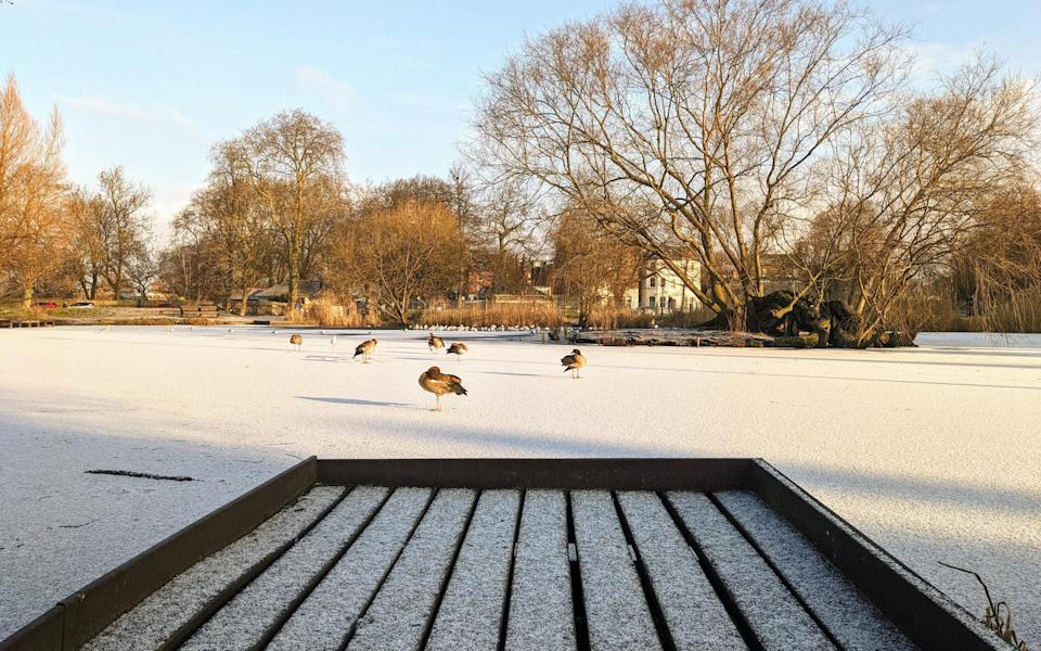 The scene at Clapham Common on Greg's early morning wander - Greg Dickinson
