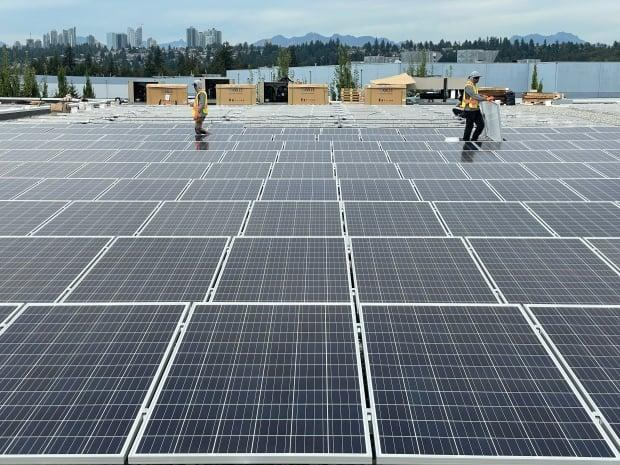 Workers install an array of more than 1,000 solar panels atop the roof of Snow Cap Enterprises in Burnaby, B.C. (Curt Petrovich - image credit)