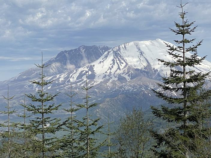 Mt. St. Helens, viewed from a roadside viewpoint recently, is off-limits to visitors during the 40th anniversary of its eruption, because of the coronavirus outbreak.