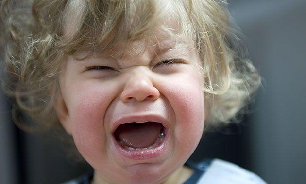 Try to have sympathy for screaming children. Photo: Thinkstock