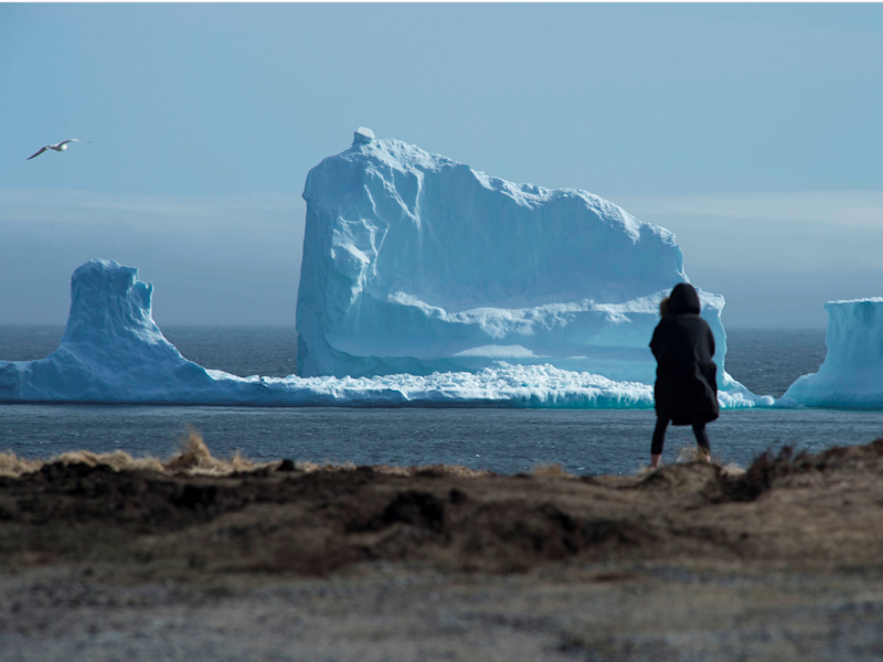 Massive iceberg in Canada becomes tourist attraction