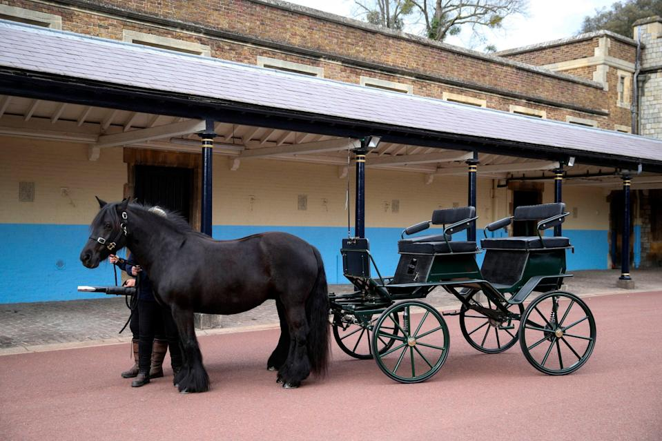 The Duke of Edinburgh's love of carriage driving will be a feature on the dayPA