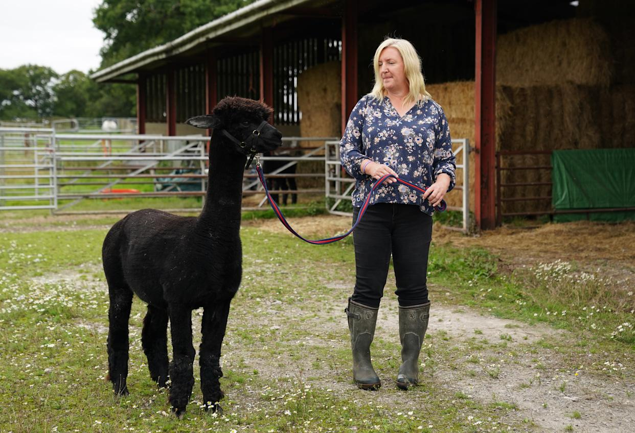 Owner Helen Macdonald with Geronimo the alpaca at Shepherds Close Farm in Wooton Under Edge, Gloucestershire.
