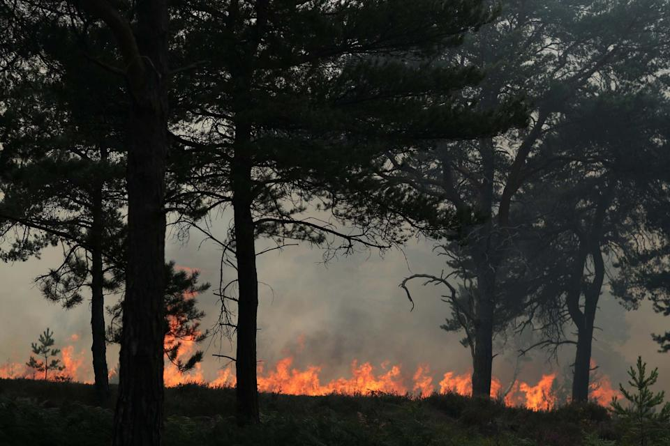 The fire rages on Friday (Getty Images)