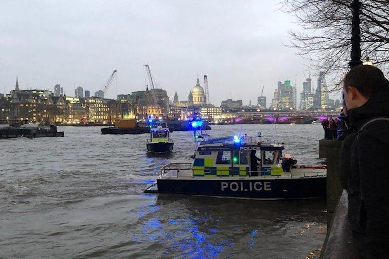 Rescue bid: Londoners look on from the banks as the drama unfolded: Twitter/@nickgow