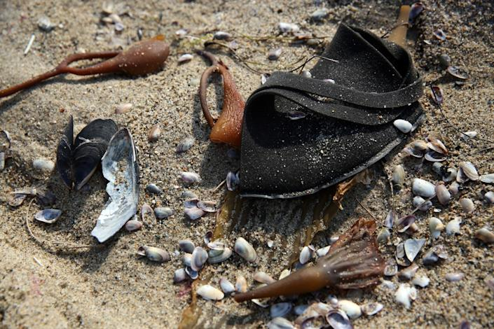 A discarded black mask sits among shells and kelp on the beach