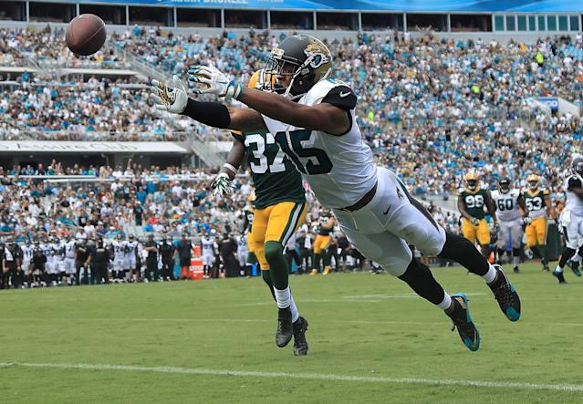 <p>Allen Robinson #15 of the Jacksonville Jaguars misses a catch during a game against the Green Bay Packers at EverBank Field on September 11, 2016 in Jacksonville, Florida. (Photo by Mike Ehrmann/Getty Images) </p>