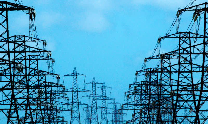 FILE PHOTO: Power lines and pylons stretch out from Dungeness nuclear power station