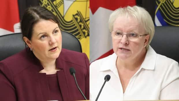 Dr. Jennifer Russell and Health Minister Dorothy Shephard revealed details of the province's new vaccination rollout plan on Friday.  (Government of New Brunswick - image credit)