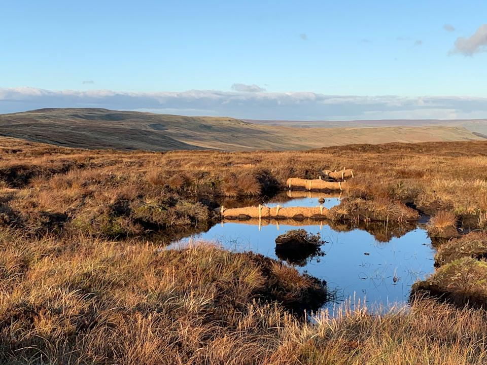 Fleet Moss restoration as part of the Great North Bog scheme led by Yorkshire Wildlife Trust (Yorkshire Peat Partnership/PA)