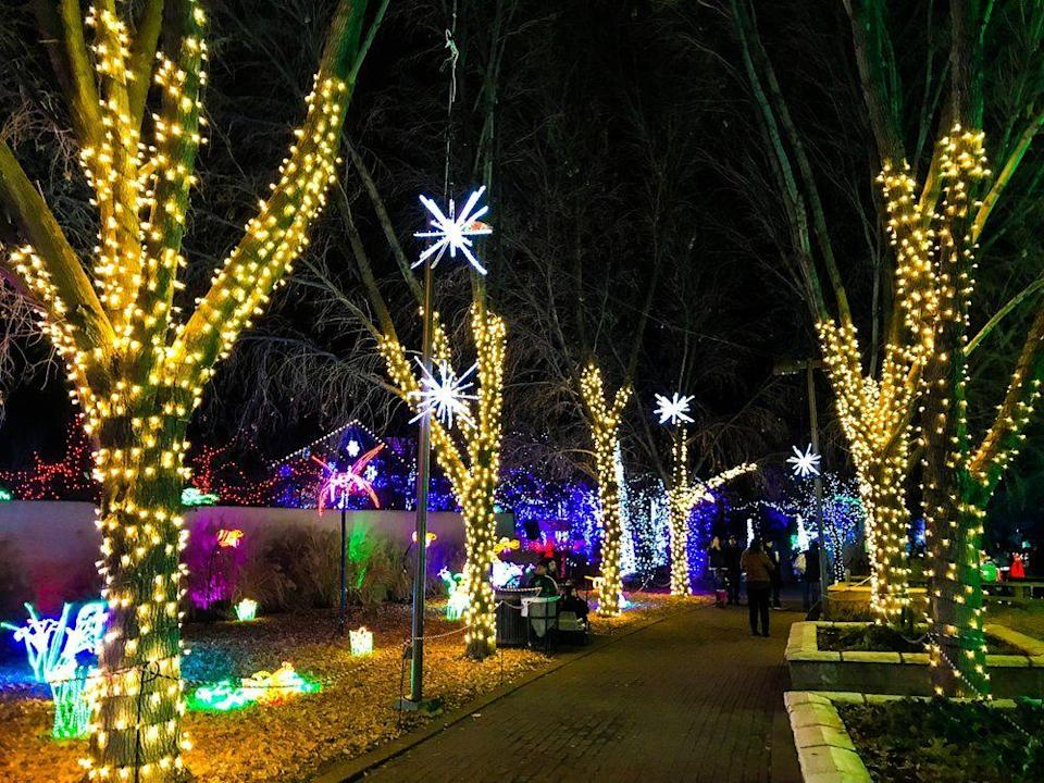 "<p><strong><a href=""https://www.yelp.com/biz/river-of-lights-albuquerque"" rel=""nofollow noopener"" target=""_blank"" data-ylk=""slk:River of Lights"" class=""link rapid-noclick-resp"">River of Lights</a> in Albuquerque </strong></p><p>""This was my second time at River of Lights. I love this type of thing during the holidays. The lights and displays are beautiful and plentiful. I wanted to make sure I didn't miss anything. There were a lot of paths that broke off so I know we did a few bits of back tracking, and really I didn't mind. I just loved it all."" - Yelp user <a href=""https://www.yelp.com/user_details?userid=Rx4bHNzBtDSds11Sa-_Q9w"" rel=""nofollow noopener"" target=""_blank"" data-ylk=""slk:Marcia V."" class=""link rapid-noclick-resp"">Marcia V.</a></p><p>Photo: Yelp/<a href=""https://www.yelp.com/user_details?userid=goDvUv3IefsKFTTve4-yLQ"" rel=""nofollow noopener"" target=""_blank"" data-ylk=""slk:Michael W."" class=""link rapid-noclick-resp"">Michael W.</a></p>"