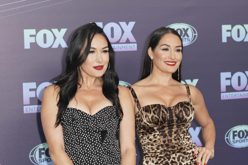 The Bella Twins, Brie and Nikki, give birth one day apart