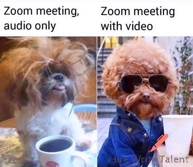 """<p>Who knew working from home could inspire so much internet gold? For this meme costume, have your friend dress in their best work clothes and wear a sign that says """"Zoom meeting with video,"""" while you wear the same thing you've been wearing for three days and a sign that says """"Zoom meeting, audio only.""""</p><p><a href=""""https://www.instagram.com/p/B-St1nlgPTs/?utm_source=ig_embed&utm_campaign=loading"""" rel=""""nofollow noopener"""" target=""""_blank"""" data-ylk=""""slk:See the original post on Instagram"""" class=""""link rapid-noclick-resp"""">See the original post on Instagram</a></p>"""