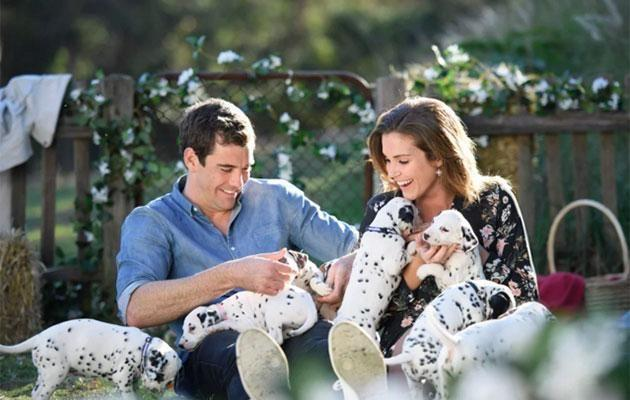 Cam surprised Georgia with dalmation pups on their one-on-one date. Source: Network Ten