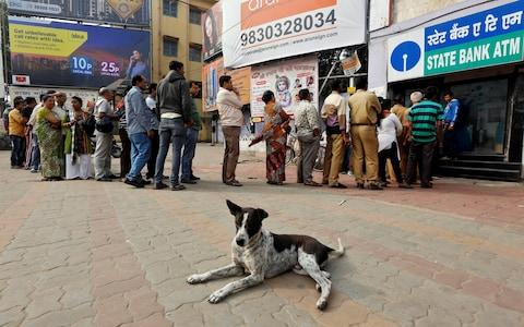A stray dog rests as people queue outside an ATM to withdraw cash in Kolkata - Credit: Reuters