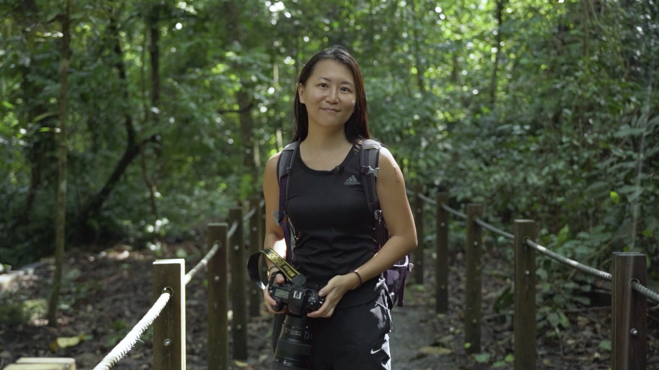 Dr Andie Ang, a primatologist whose research is on the Raffles' banded langur. She chairs the Raffles' Banded Langur Working Group set up by Mandai Nature Fund in Singapore, and leads the research work for these animals. Dr Ang stated that these langurs help to keep the forests 'healthy' by dispersing seeds, thereby conserving the biodiversity of the island. (PHOTO: Yahoo TV Southeast Asia)
