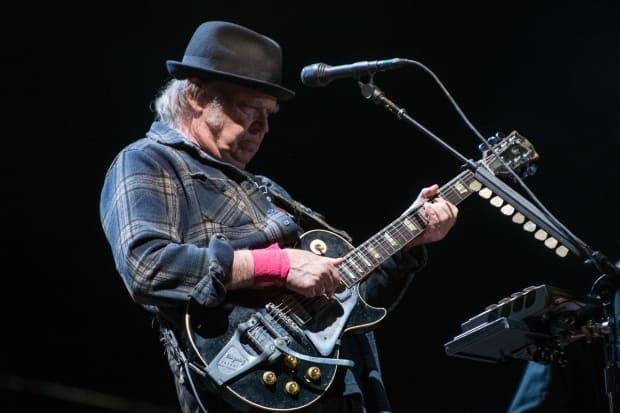 Neil Young has become the latest artist to strike gold with his song catalogue. The Hipgnosis Songs Fund, a British investment company, announced that it had acquired a 50 per cent stake in Young's catalog of some 1,180 songs that include Heart of Gold, Rockin' in the Free World and Cinnamon Girl.