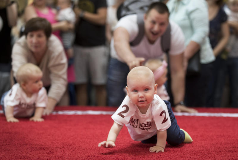 Babies crawl during the Baby Race event to mark international Children's Day in Vilnius, Lithuania, Saturday, June 1, 2019. Twenty five babies took part in the competition with red carpet to protect their knees, as mums, dads, grandparents and other onlookers encourage the competitors. (AP Photo/Mindaugas Kulbis)
