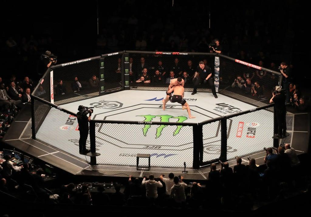 A general view of Paul Craig in action against Magomed Ankalaev at The O2 Arena, London (Simon Cooper/PA) (PA Archive)
