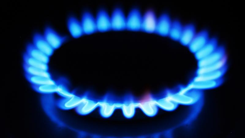 Four energy suppliers fail to pay £14.7m in green taxes to Ofgem