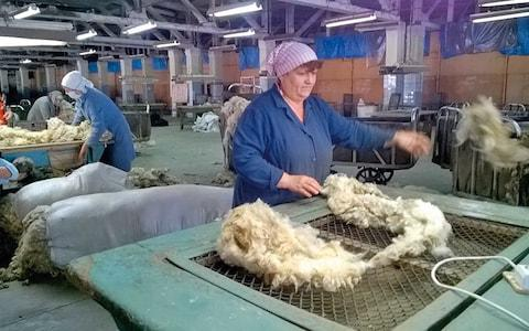 A Chernihiv wool plant where radioactive fleeces were taken - Credit: igor kostin/getty