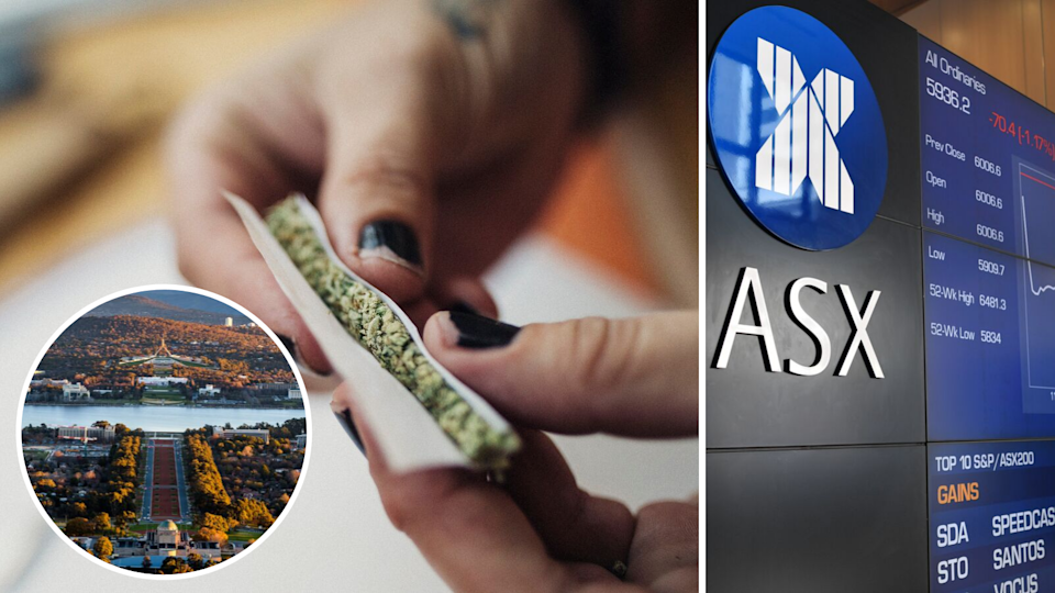 What are the weed stocks to look out for? (Source: Getty)