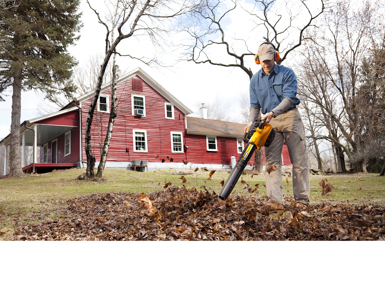 Which Gas Leaf Blower Is The Best