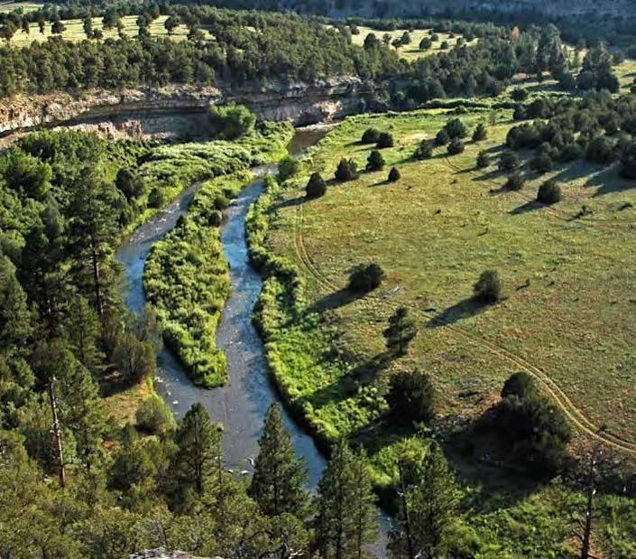 """<p>The property abuts the Santa Fe National Forest to the east and the Pecos National Historical Park to the north.<i> <i>(Photo: <a href=""""http://bit.ly/1oZ16Zz"""" rel=""""nofollow noopener"""" target=""""_blank"""" data-ylk=""""slk:Swan Land Company"""" class=""""link rapid-noclick-resp"""">Swan Land Company</a>)</i><br></i></p>"""