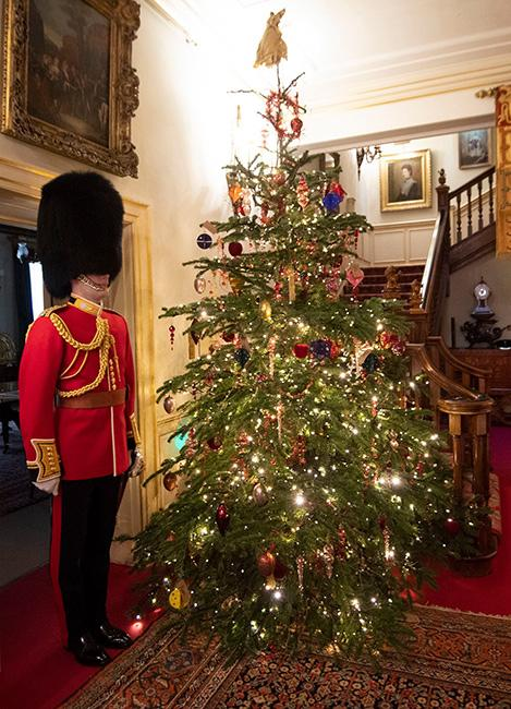 clarence-house-tree