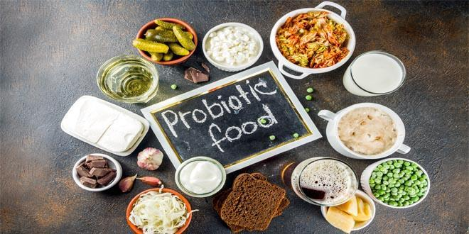 Probiotic food to reduce belly fat