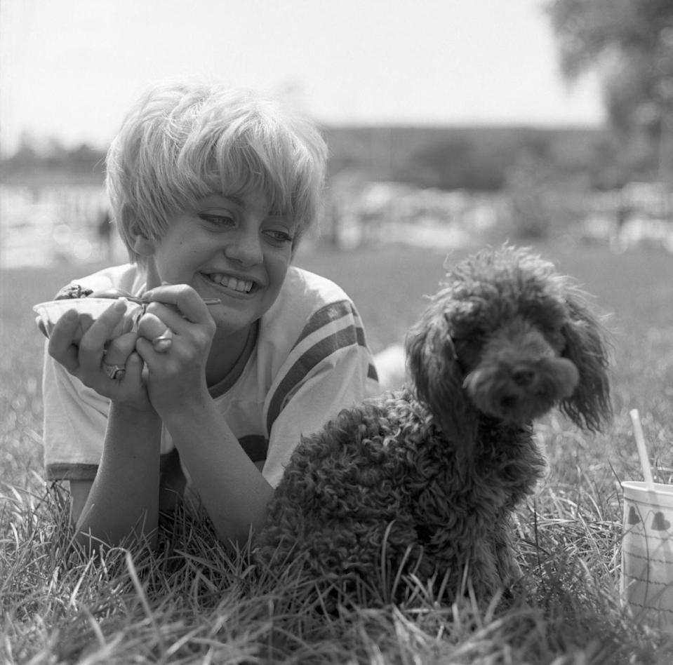<p>Goldie Hawn eats ice cream next to her dog on September 8th, 1966.</p>
