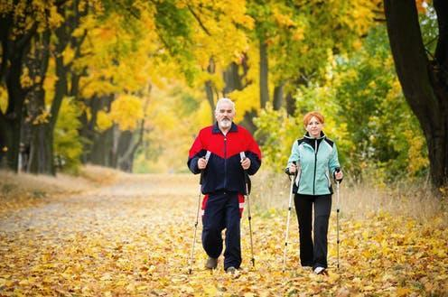 """<span class=""""caption"""">Our brain may depend on physical activity to stay healthy.</span> <span class=""""attribution""""><a class=""""link rapid-noclick-resp"""" href=""""https://www.shutterstock.com/image-photo/senior-couple-making-nordic-walking-park-158289224"""" rel=""""nofollow noopener"""" target=""""_blank"""" data-ylk=""""slk:Slawomir Kruz/ Shutterstock"""">Slawomir Kruz/ Shutterstock</a></span>"""
