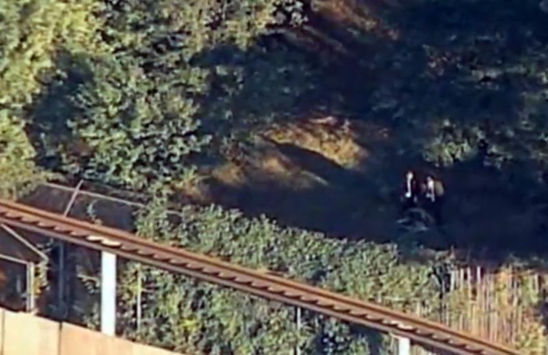 """This Friday, Sept. 21, 2012 image from video provided by WABC shows authorities investigating the scene where a man was mauled by a tiger at the Bronx Zoo in New York. NYPD spokesman Paul Browne said Saturday that 25-year-old David Villalobos told investigators that he deliberately leaped into a zoo exhibit because he wanted to """"be one with the tiger."""" Police say they plan to arrest Villalobos, who remained hospitalized in stable condition Saturday after the 400-pound cat bit him in the back. He also suffered broken bones in the jump Friday from an elevated train that circles the exhibit. (AP Photo/WABC-TV)"""