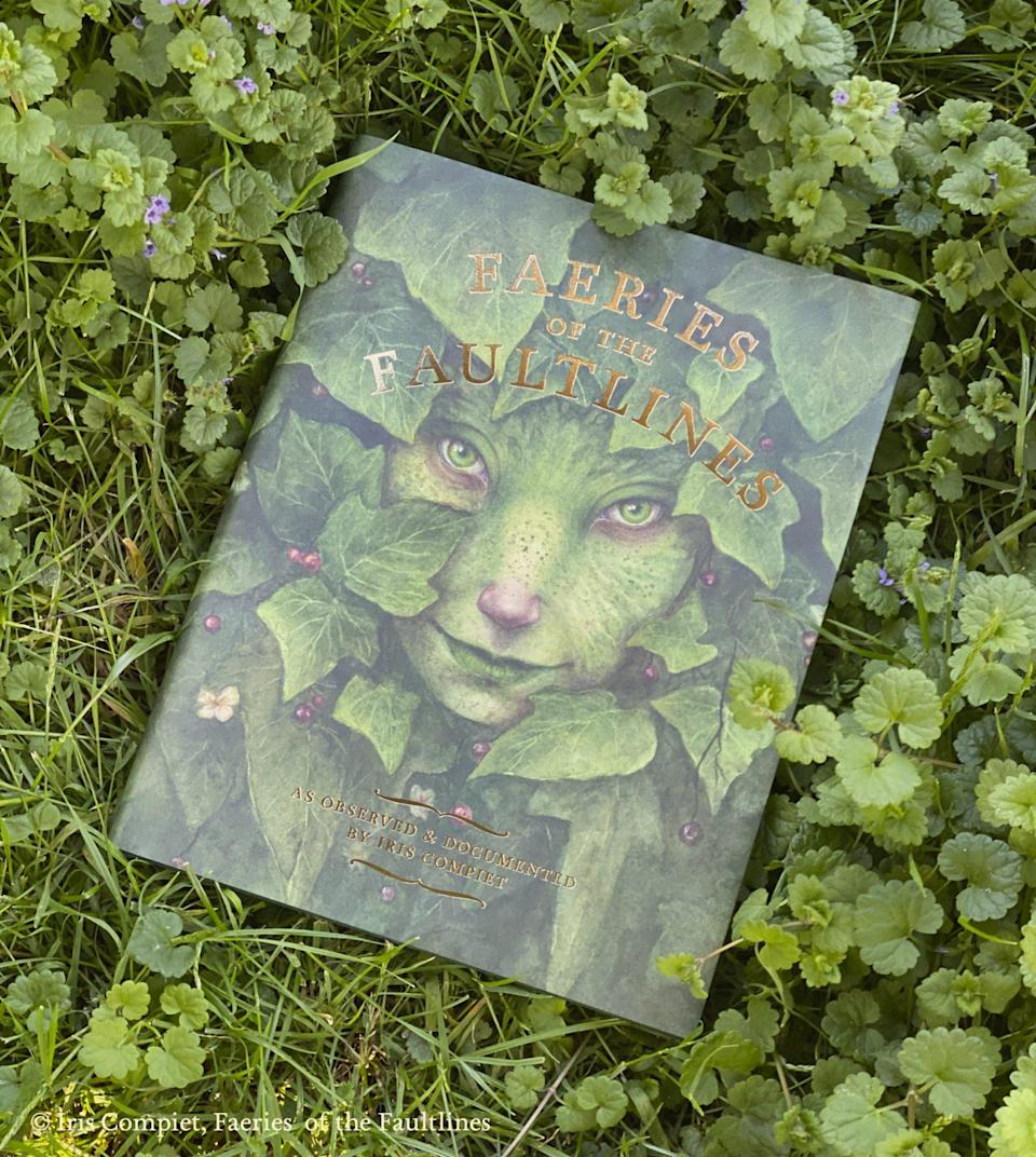 Faeries of the Faultlines book on top of grass