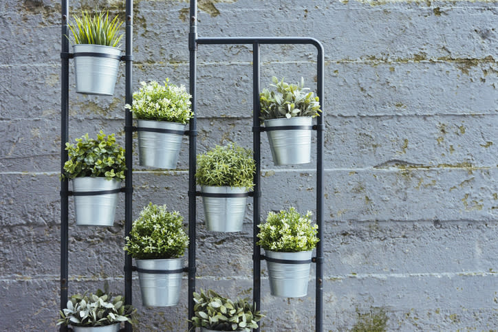 You really do just need a small space to plant herbs
