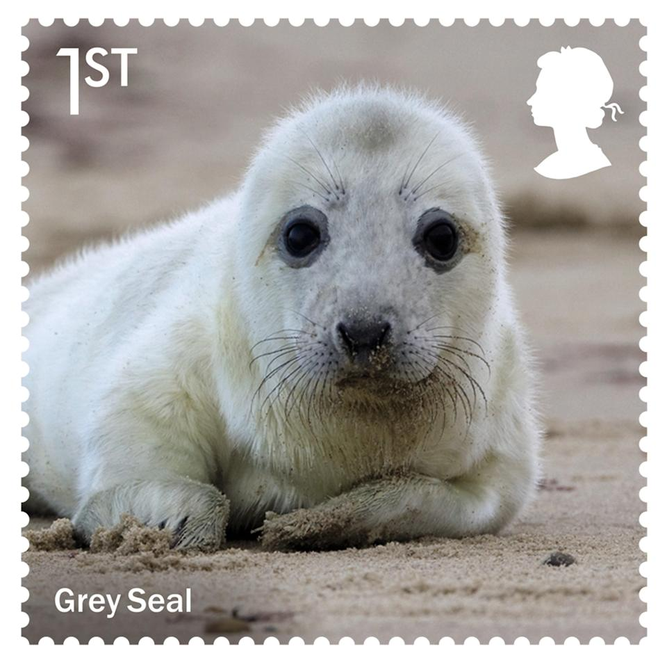 Royal Mail stamp with grey seal (PA Media)