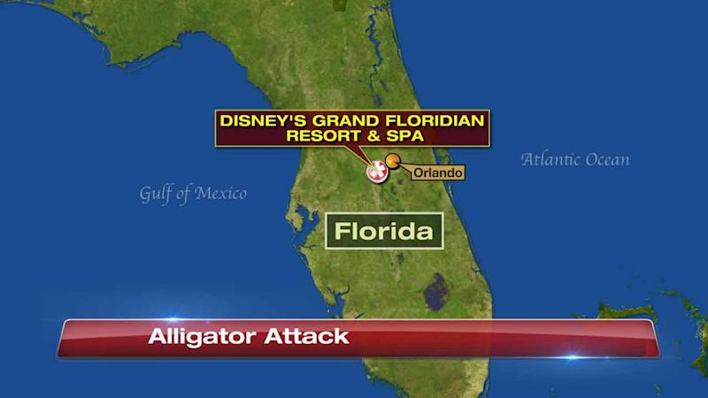 Child dragged into lake by alligator at disney world gumiabroncs Gallery