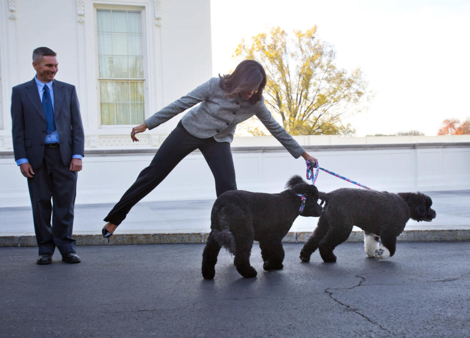 <p>First lady Michelle Obama welcomed the official White House Christmas tree to the White House wearing a gray wool blazer with asymmetrical buttons and black trousers. She did so with her dogs Bo and Sunny, who were obviously excited by the arrival of the tree, which came from Bustard's Christmas Trees in Lansdale, Pennsylvania. <i>Photo: AP</i><br></p>