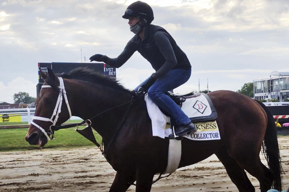 In this image taken from video, Preakness contender Art Collector, ridden by exercise rider Annie Finney, walks on the track at Pimlico Race Course, Thursday, Oct. 1, 2020 Baltimore. Art Collector looks like the biggest threat to Kentucky Derby winner Authentic in the Preakness (AP Photo/Stephen Whyno)