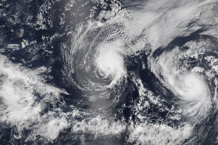 Hurricane Iselle and Hurricane Julio are pictured en route to Hawaii in this NASA handout satellite image