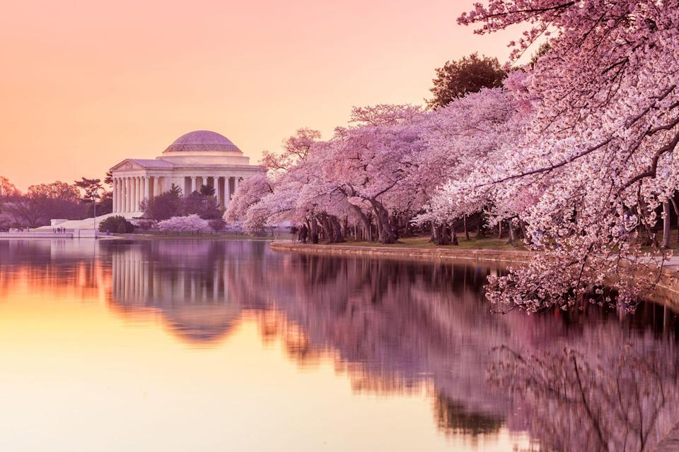 """<p>Spanning more than 3 million miles with 50 states, America is home to some of the world's most captivating <a href=""""https://www.veranda.com/travel/g35535520/botanical-gardens/"""" rel=""""nofollow noopener"""" target=""""_blank"""" data-ylk=""""slk:natural landscapes"""" class=""""link rapid-noclick-resp"""">natural landscapes</a>, <a href=""""https://www.veranda.com/travel/g36475733/best-florida-beaches/"""" rel=""""nofollow noopener"""" target=""""_blank"""" data-ylk=""""slk:breezy beaches"""" class=""""link rapid-noclick-resp"""">breezy beaches</a>, and architectural wonders. The one-of-a-kind cities act as the heartbeat of the country, brimming with their own traditions. Each locale bursts with beauty, from the cities' beloved parks hidden across the neighborhoods to the cast of characters that make every town unique. However, there are a few gorgeous cities in the U.S. that stand out from the rest due to their cultural and natural prominence. Here, 10 of the prettiest cities in America, along with our top places to take in each town's full beauty</p>"""