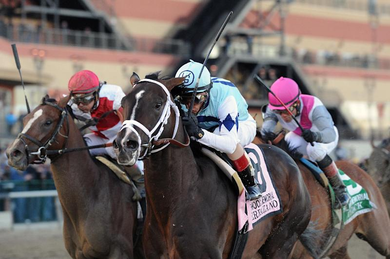 In this photo provided by the New York Racing Association, Verrazano, front right, with John Velazquez aboard, captures The Grade I Wood Memorial stakes horse race at Aqueduct Race Track in New York, Saturday, April 6, 2013. Normandy Invasion (red helmet) was second and Vyjack (pink helmet) was third. (AP Photo/New York Racing Association)
