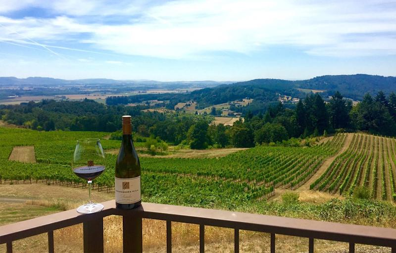 Delicious Wines in a Serene Setting at Oregon's Youngberg Hill