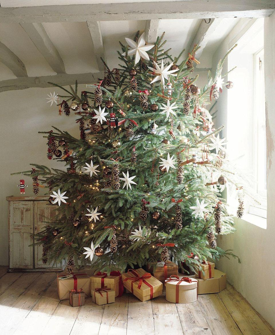 """<p>For a rustic yet festive look, decorate your tree with an assortment of star-shaped ornaments and pinecones. </p><p><a class=""""link rapid-noclick-resp"""" href=""""https://go.redirectingat.com?id=74968X1596630&url=https%3A%2F%2Fwww.etsy.com%2Flisting%2F722794237%2Fsmall-pinecones-real-pinecones-natural&sref=https%3A%2F%2Fwww.goodhousekeeping.com%2Fholidays%2Fchristmas-ideas%2Fg2707%2Fdecorated-christmas-trees%2F"""" rel=""""nofollow noopener"""" target=""""_blank"""" data-ylk=""""slk:SHOP PINECONES"""">SHOP PINECONES</a></p><p><strong>RELATED:</strong> <a href=""""https://www.goodhousekeeping.com/interactive/a29862022/how-to-decorate-a-christmas-tree-professionally/"""" rel=""""nofollow noopener"""" target=""""_blank"""" data-ylk=""""slk:How to Decorate a Christmas Tree Professionally"""" class=""""link rapid-noclick-resp"""">How to Decorate a Christmas Tree Professionally</a></p>"""