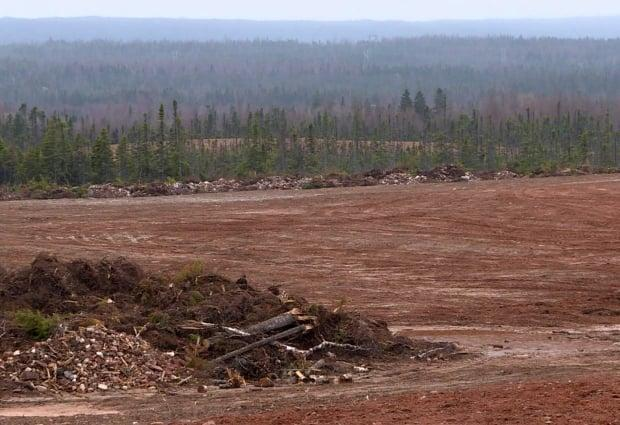 This cleared land at Junction Brook, east of Deer Lake, is some of the 700 or so acres that has been leased to three farming operations for commercial potato production.