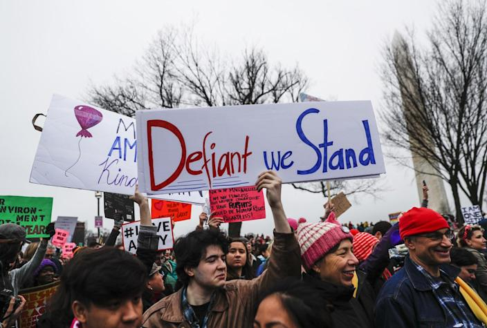 Protesters at the Women's March on Washington